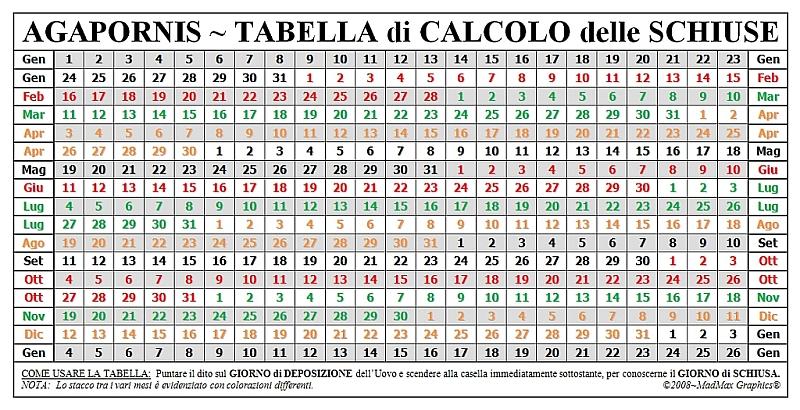 Tabella calcolo for Calcolo superficie
