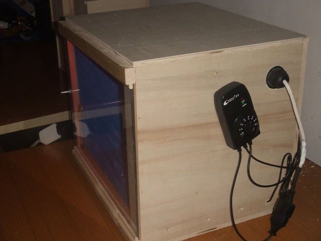 Come Costruire una Camera Calda per gli Uccellli